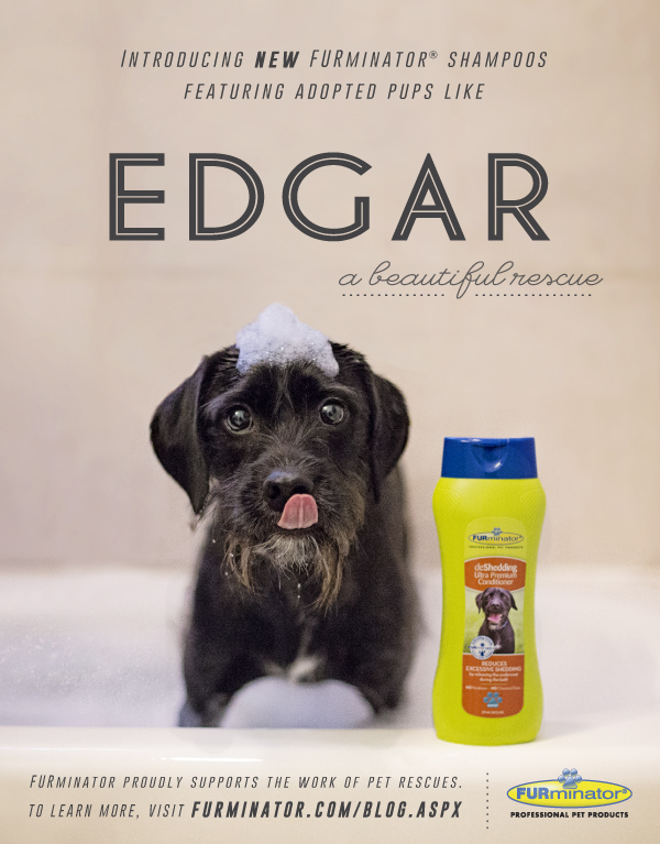 Edgar Beautiful Rescue Furminator Poster